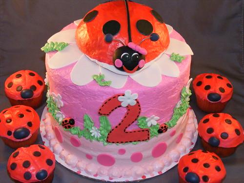 Wondrous Ladybug Birthday Cake A Photo On Flickriver Funny Birthday Cards Online Alyptdamsfinfo