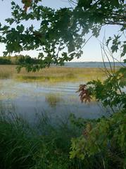 HPIM0516 (acadie_bound) Tags: ontario thousandislands stlawrenceriver wolfeisland