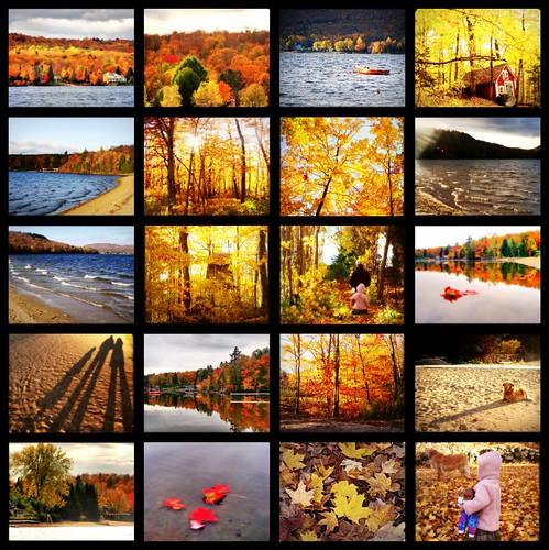 Mosaique d'automne....
