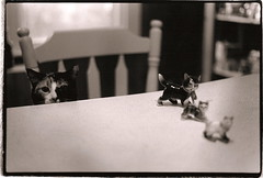 kitty party. (ancient history) Tags: blackandwhite cats film kitchen cat toy stu kitty depthoffield kitties figurine porcelain