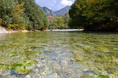 Clear water (Matt Taylor) Tags: holiday greece syvota acheron