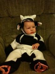 Evy's Halloween Costume!