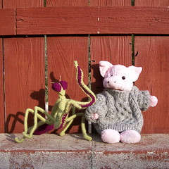 Mantis and Piggy