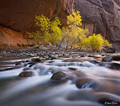 Zion Narrows - Canyon Cascade (Steve Sieren Photography) Tags: autumn fall water river utah walk canyon virgin zion guide narrows photoworkshop scenicphotoworkshopscom stevesierencom