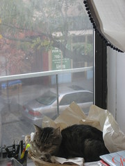 IMG_4426 (flaschenpostpics) Tags: nyc myfirstapartment manhattanapartment apartmenttherapyny uppereastsidestudio