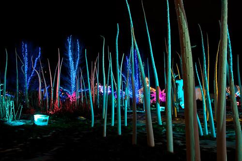 Hudson Gardens Holiday Lights