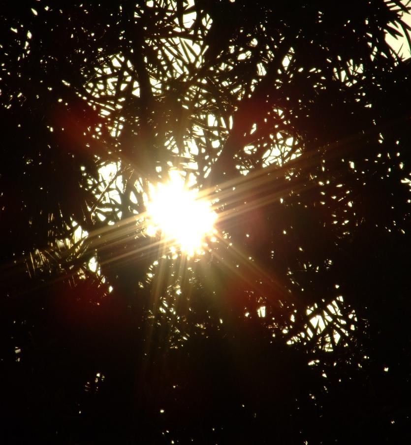 sun pic 01