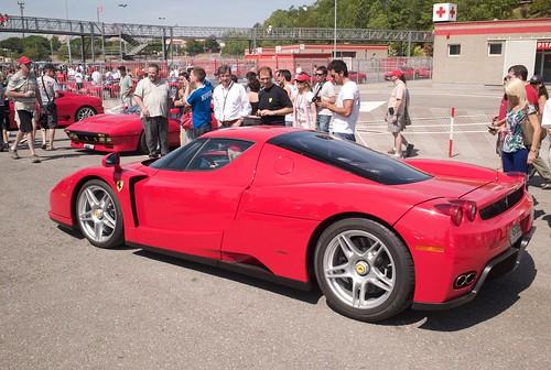 L1044531- Ferrari GTO 25 anys- Ferrari Enzo (by delfi_r)