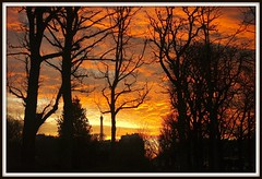 "Eifel tower in a field of fire IV (Bill Liao) Tags: trees winter sunset orange black paris tree silhouette photos explore eifeltower set"" leicam8 pfosilver ""framed ""explore"