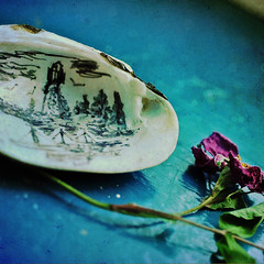 beach charms (anniedaisybaby) Tags: summer stilllife lighthouse macro texture tourism beach painting shell manitoba recreation 60mm foundart scallop windowsill charms bluegreen interlake driedflower macrography heclaisland adayinthesun magicunicornverybest thankstojenny