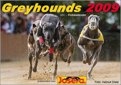 Greyhounds-Titelblatt
