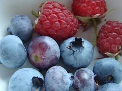 Bosvruchten, bosbessen, blauwe bessen, frambozen