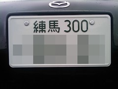 http://farm3.static.flickr.com/2563/3745295495_d7e9bc8a1c_m.jpg