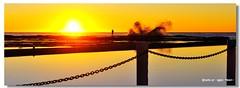 _DSC8950_1200 (alextzj) Tags: pool sunrise tidal narrabeen
