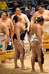 日馬富士 画像59