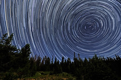 Perseid Meteors Penetrating Circumpolar Star Trails (Fort Photo) Tags: trees sky nature silhouette night forest landscape shower star nikon bravo colorado trails silhouettes explore astrophotography co astronomy streaks frontpage 2009 starry meteor afterdark startrails polaris northstar d300 shootingstar circumpolar perseid perseids cameronpass specnature tokina1116