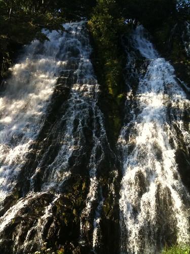 オシンコシンの滝@知床。5時頃