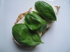 Followed by basil