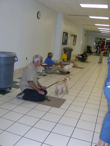 1st Puppy class