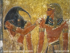 Thoth and Seti I in KV17 Tomb (Sandro Vannini) Tags: wall ancient tomb paintings egypt pharaoh valleyofthekings hieroglyphics egyptians newkingdom 19thdynasty setii bookofgates rehorakhty heritagekey sandrovannini giovannibattistabelzoni heritagesite1222 morningsungod firstpillaredhall