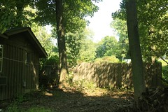 _MG_6394.JPG (zimbablade) Tags: trees sleepyhollow dougmiller videopoem
