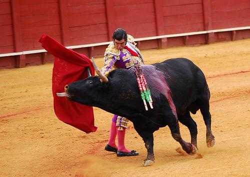 http://farm3.static.flickr.com/2563/3975724594_9fc19ee01a.jpg