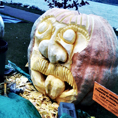 the biggest pumpkin in Michigan by farlane