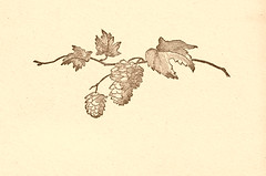 Winter Branch Sepia
