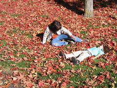 Making leaf angels