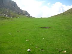 Tikjda Algeria (dzpixel) Tags: mountain green nature grass montagne algeria vert algerie mont pelouse verdure verte herbe afrique dz alger tikjda djurjura samlam kabyli dzpixel