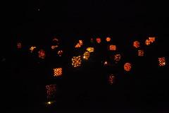 IMG_1004 (lulubrooks) Tags: sleepyhollow jackolanternblaze pumpkinblaze 20091018hudsonvalley