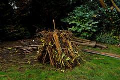 Traditional Sussex Bonfiring Nov 5th (Fittleworth ~ UK) Tags: bonfire november5th traditionalsussexbonfiringnov5th