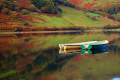 tal-y-llyn lake caernarfonshire wales (plot19) Tags: uk autumn lake reflection green water wales landscape boats nikon britain now glassy mywinners abigfave platinumphoto colorphotoaward fbdg saariysqualitypictures plot19 coth5 talylakecaernarfonshire