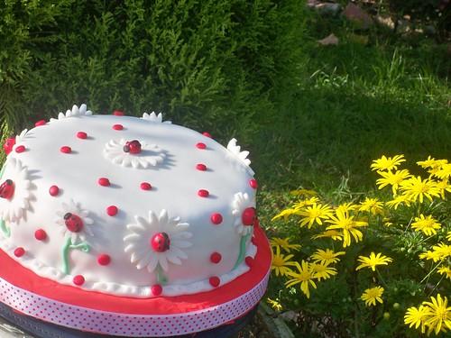 uğurböcekli pasta