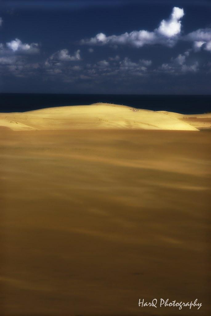 TOTTORI-Dune