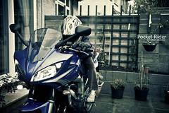Pocket Rider (~FreeBirD~) Tags: uk love bristol freedom child mini rocket windscreen rider freebird girlchild pocketrocket powerhorse glori girlrider 600cc manibabbar maniya 09model fazer2009 96bhp pocketrider yamahafazers2 fazer600s2 bluefazer