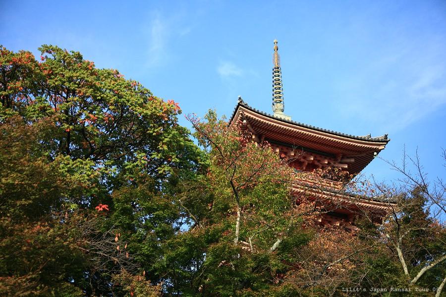 京都清水寺_16