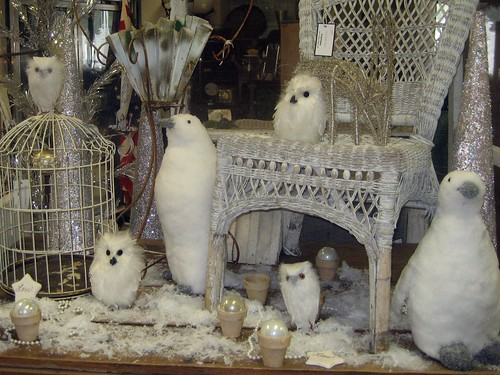 Snow Owls and Penguins - 2