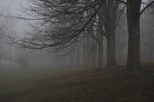 Foggy Exhibition Park by DaShef