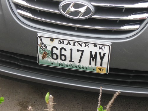 Maine Numberplate
