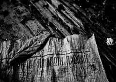 29 January 1978... (ssj_george) Tags: old bw white house black macro leave texture dusty abandoned monochrome closeup lens table greek lumix newspaper blackwhite wooden raw village decay pano cyprus file panasonic headline 1978 pancake 20mm date dust dmc lightroom kypros panagiotis panny f17 m43 gf1 lefkara panayiotis   leukara paschalis kipros   georgestavrinos pashalis paschali micro43    dmcgf1 ssjgeorge  xaraugi giorgosstavrinos  pashali