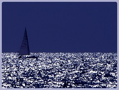 Sometime I feel like a sea (Freddy Adams) Tags: sea silver reflections relax nikon mare sailing quiet peace plata riflessi deepblue tirrenia barcaavela d90 spettacolare navigare manfrediadamo