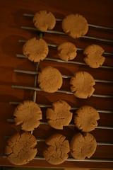 Sesame cogwheels (tsnoni) Tags: cookie sesame