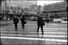 Swedish don't respect traffic light. (flevia) Tags: bw analog blackwhite sweden stockholm baltic bn sergelstorg nophotoshop stoccolma biancoenero nikonfa foma svezia hotorget analogico fomapan nikkor35mmf2 scannednegatives fomapan400 epsonv700 thebaltics autaut epsonperfectionv700photo flevia imanalog swedishdontrespecttrafficlight