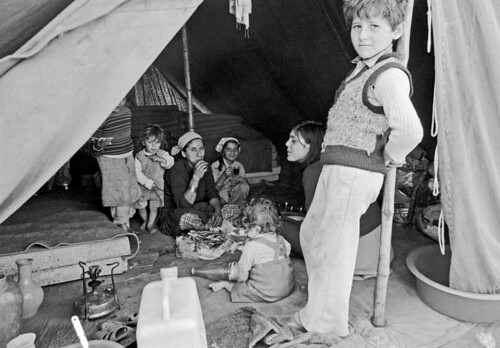 Displaced Persons in Lebanon