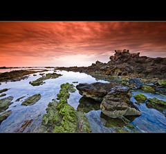 Faulty metaphor. Kryptonite kills. (Matthew Stewart | Photographer) Tags: ocean sea green beach water lines sunrise rocks searchthebest matthew sandy tide low australia explore stewart nsw newsouthwales frontpage coffsharbour