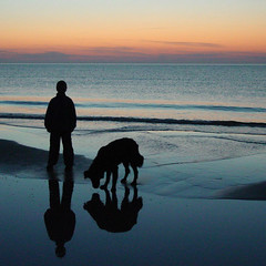 A boy and his dog (Loe Giesen) Tags: sunset beach nature reflections tversted nikoncoolpixp80 loegiesen