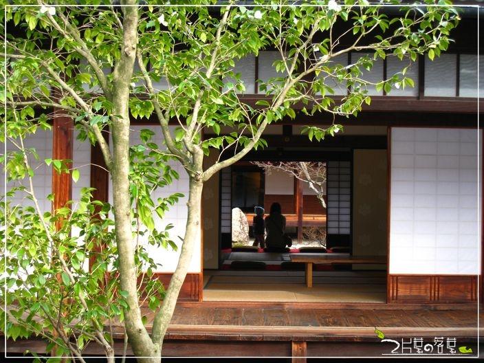 京都公車_08.JPG