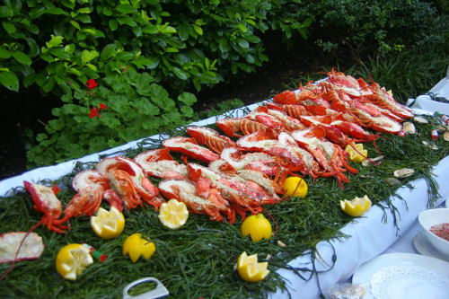 Lobster in Central Park!