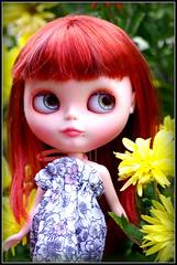 Buh-bye flowers, gotta go now, hafta pack ... I gots a plane to catch!
